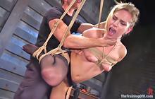 Sidney Cole's rough bondage fuck
